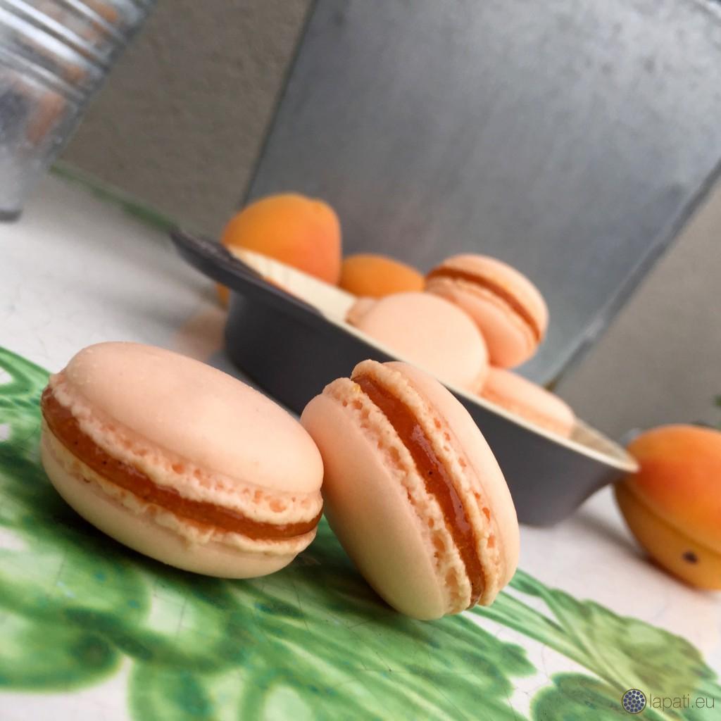 AprikosenMacarons.4