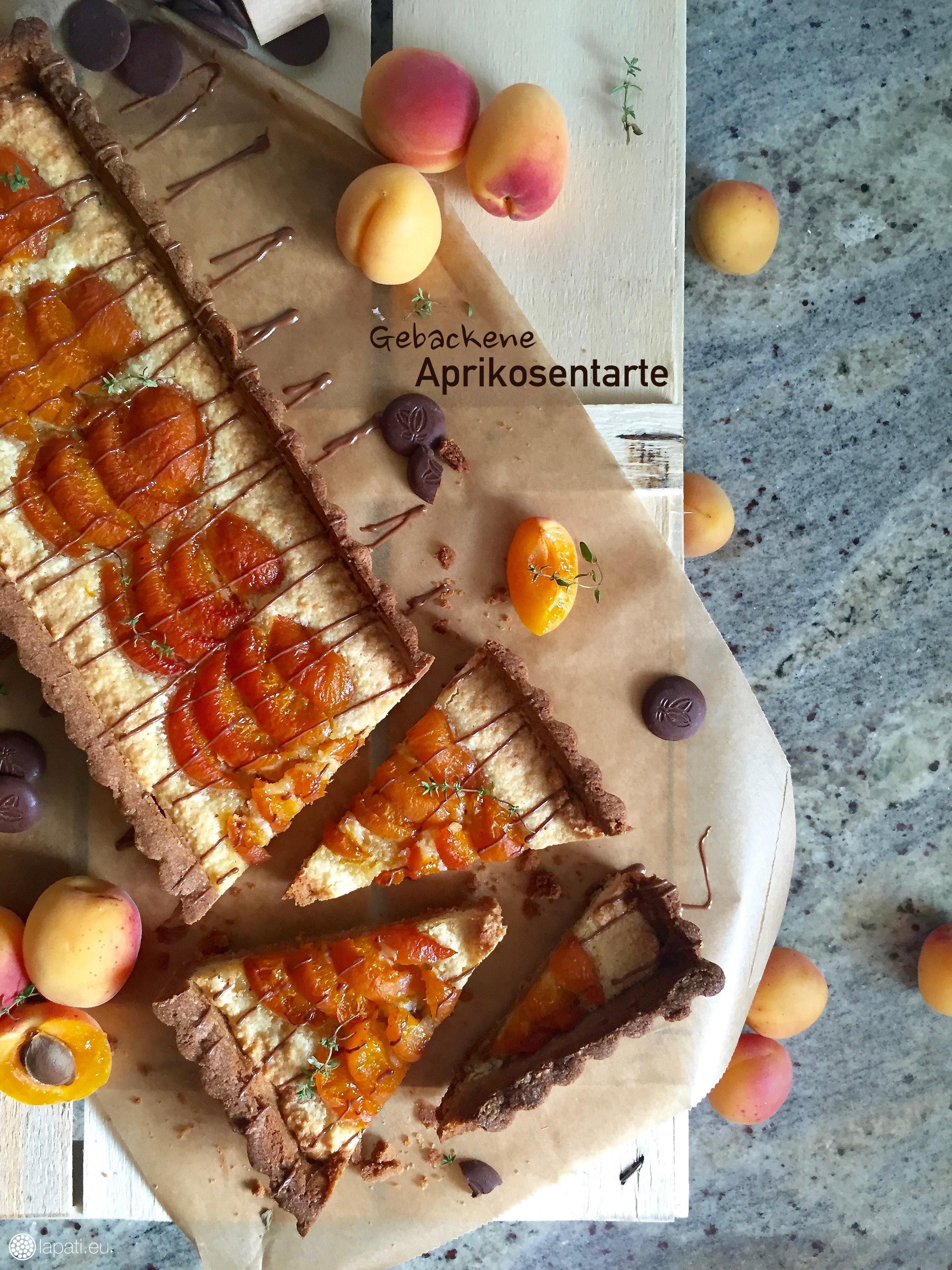 Oh ja. Eine gebackene Aprikosentarte oder -kuchen ist immer eine feine Sache. Dieser hier kommt auch noch mit Schokolade daher.